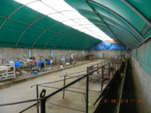 6f. AGROTUNEL DELTACOVER 10x30m